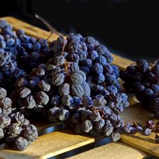 Valpolicella: Amarone & Co.